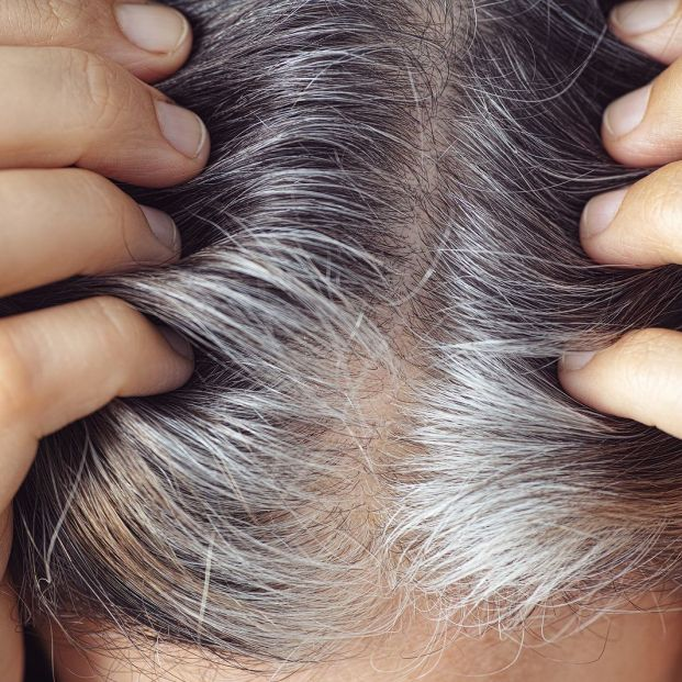 bigstock A Woman Showing Her Gray Hair  378364186